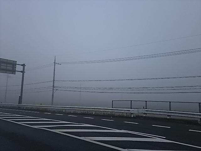さくら橋付近