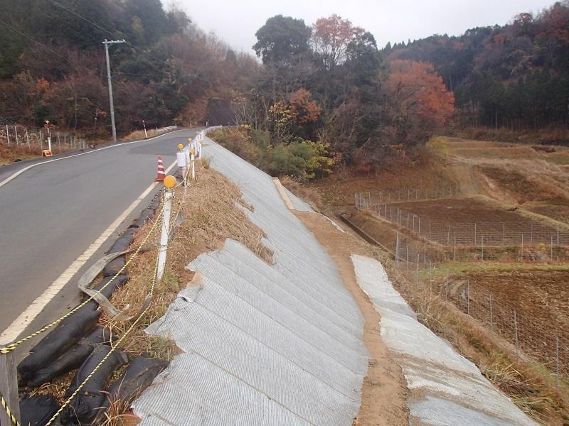 管内一円(下野条上川口停車場線)災害復旧工事